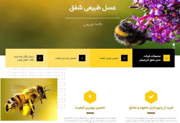 طراحی وب سایت فروش عسل